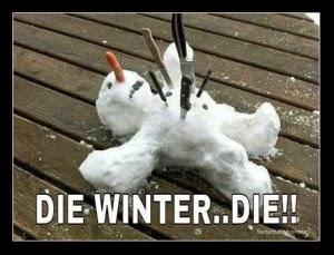 die-winter-funny-dead-snowman-300x229