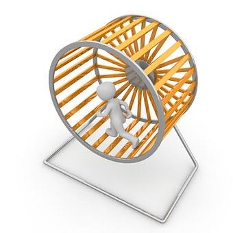 hamster-wheel-1014036__340